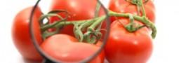 PRODOTTI PREIMBALLATI, OBBLIGO DELLA INDICAZIONE DEI VALORI NUTRIZIONALI